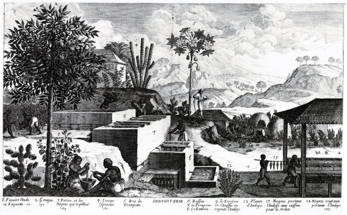 indigoterie-1667